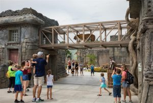 Guests observe a tiger traversing and over-path walk at Tulsa Zoo's Lost Kingdom